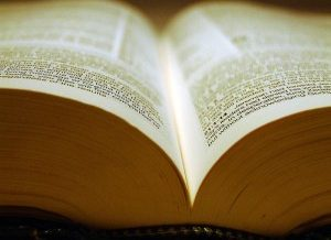 The Bible Translation Industry Is At A Crossroads
